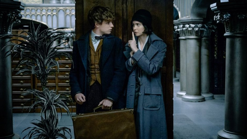 fantastic_beasts_and_where_to_find_them_still_2