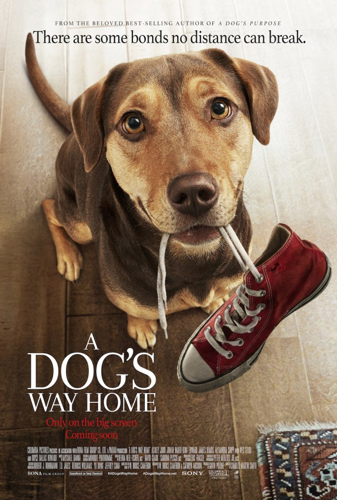 a-dogs-way-home-poster